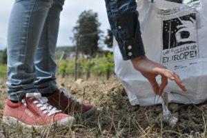 II plogging entre viñedos @ Albet i Noya